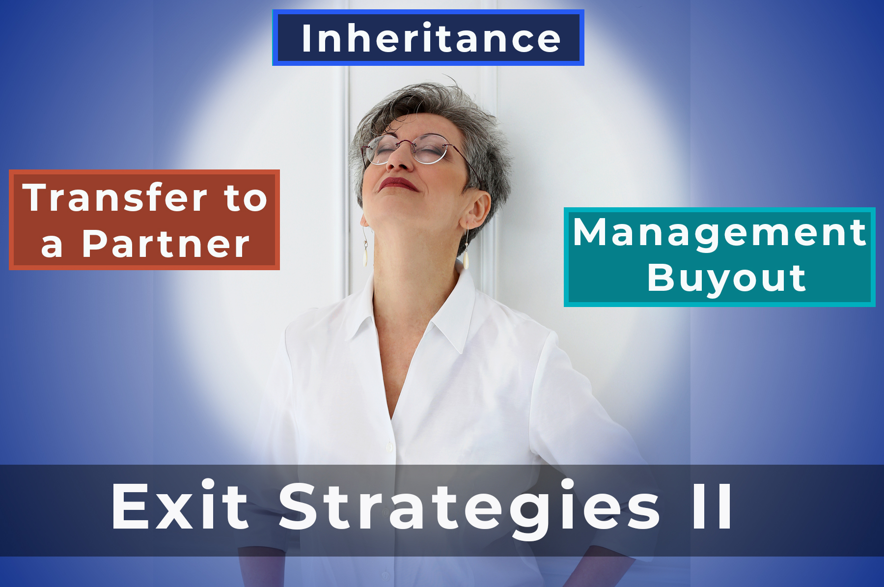 BUSINESS EXIT STRATEGIES II