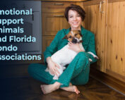 young woman at home with her dog. The phrase Emotional Support Animals and Florida Condo Associations